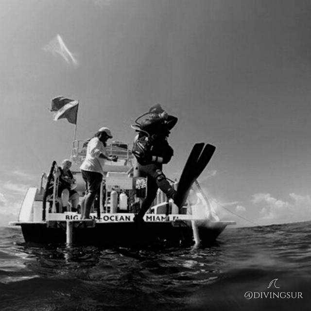 Paso de gigante buceo desde embarcaciones buceo