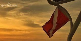 Bandera de buceo deportivo