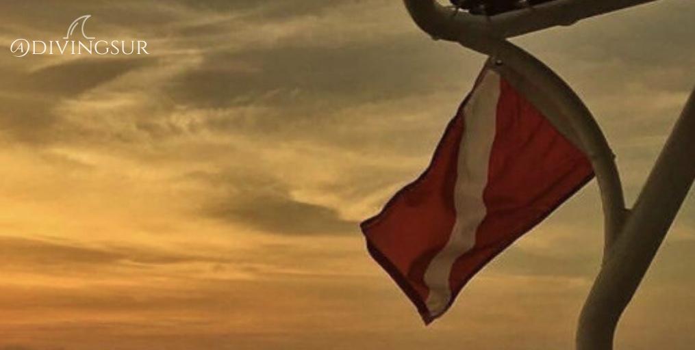 Bandera de buceo  Por que buceo