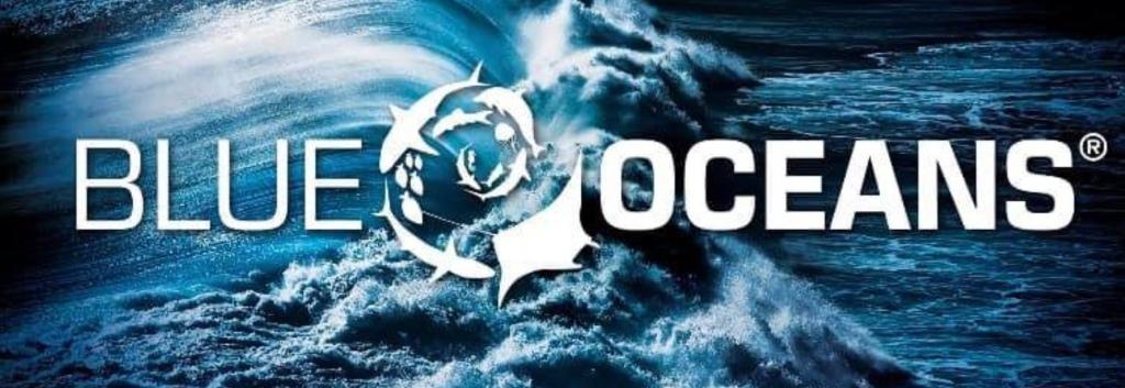 Ssi Blue Oceans , por que buceo