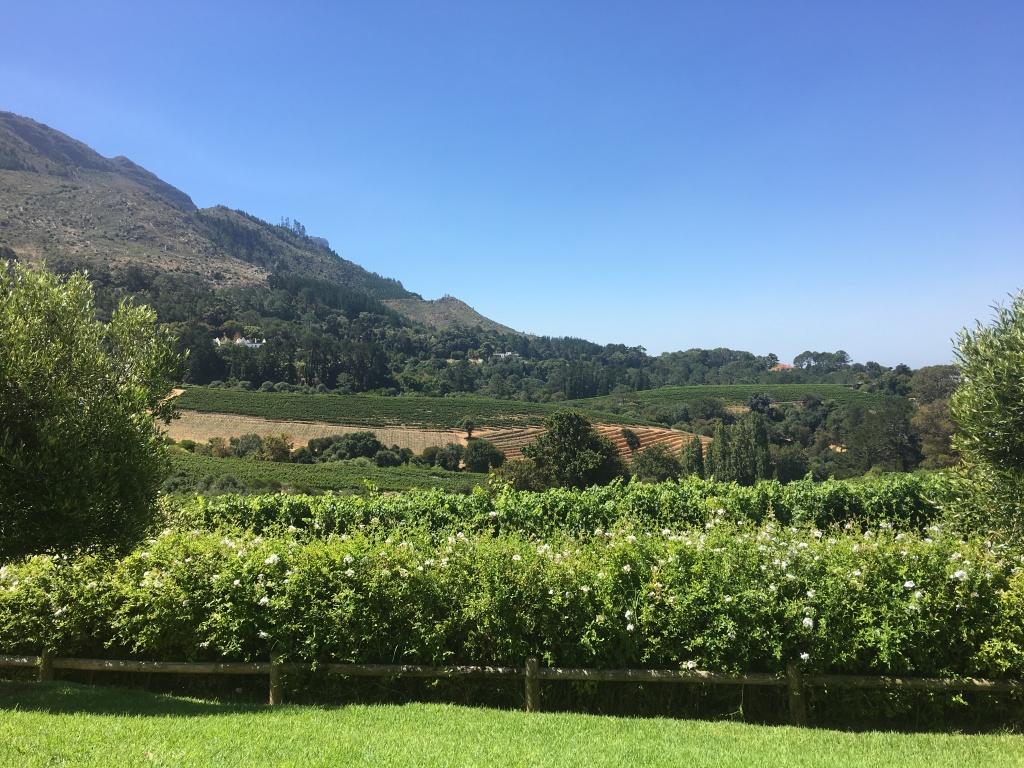 Buceo en sudafrica