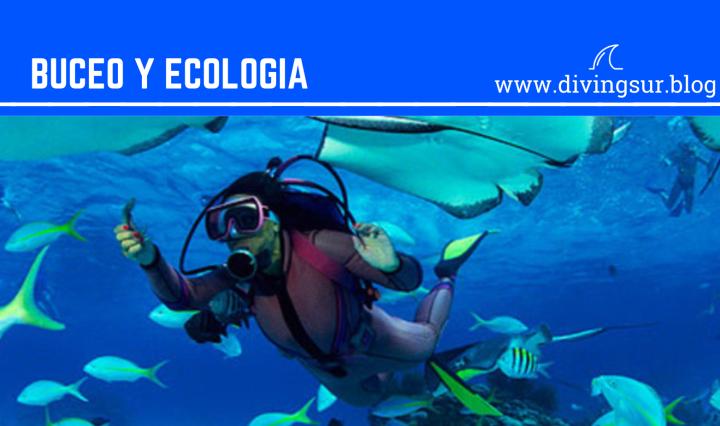 Buceo y ecologia