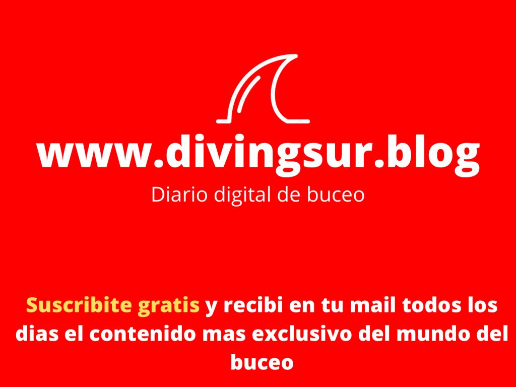 Diving sur